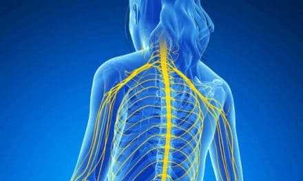 Exactly How Is Chiropractic Neurology Distinct From Medical Neurology?